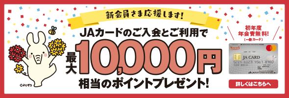 JAカード入会ポイントプレゼントバナー
